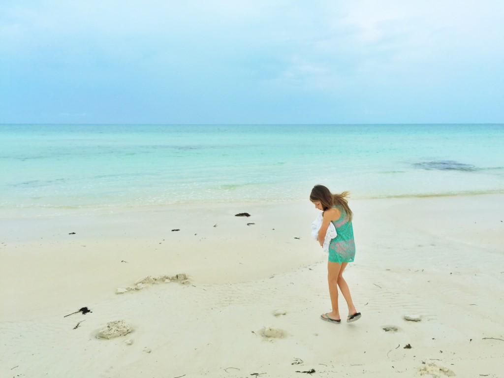 Admiring the shells on the beach of Taylor Bay in the Turks and Caicos