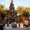 OC Snow Play Day with the Anaheim Ducks