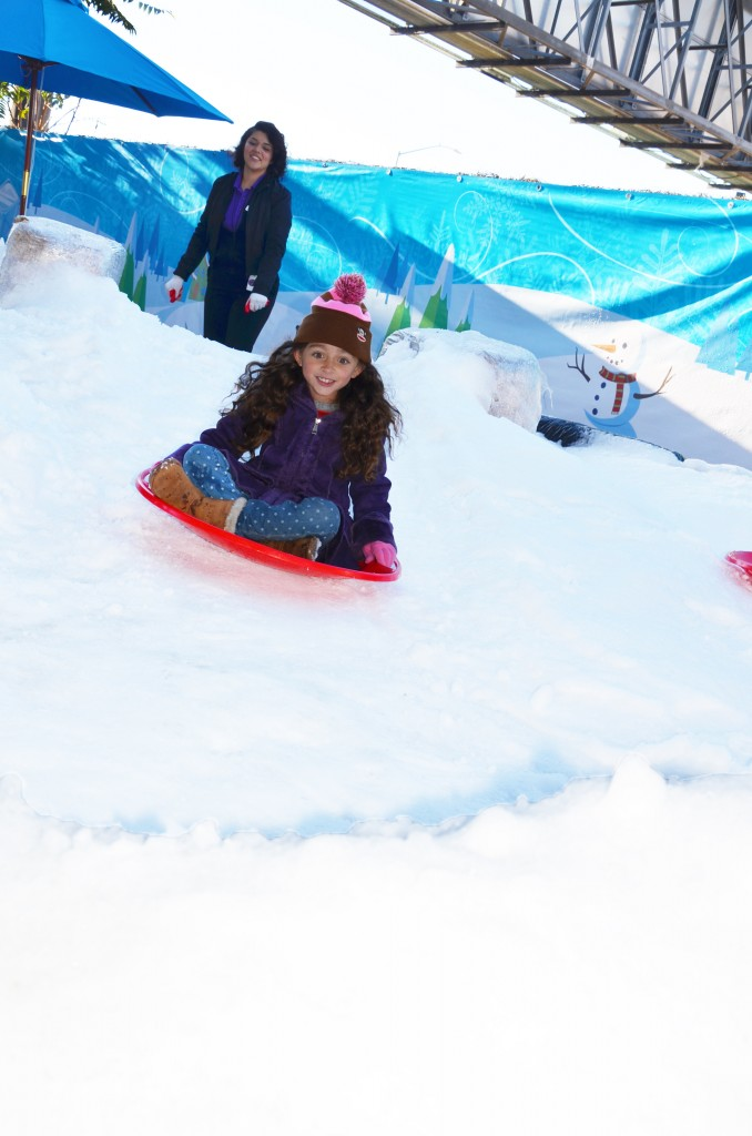 Sledding at Discovery Cube OC