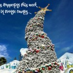 Events Happening This Week in Orange County: December 7th – 11th