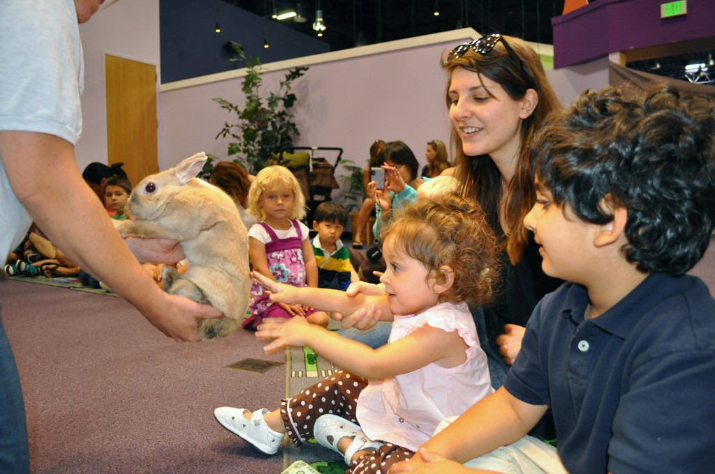 Petting a bunny at Pretend City