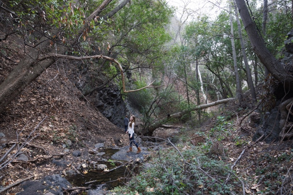 An adventerous hike to the waterfall