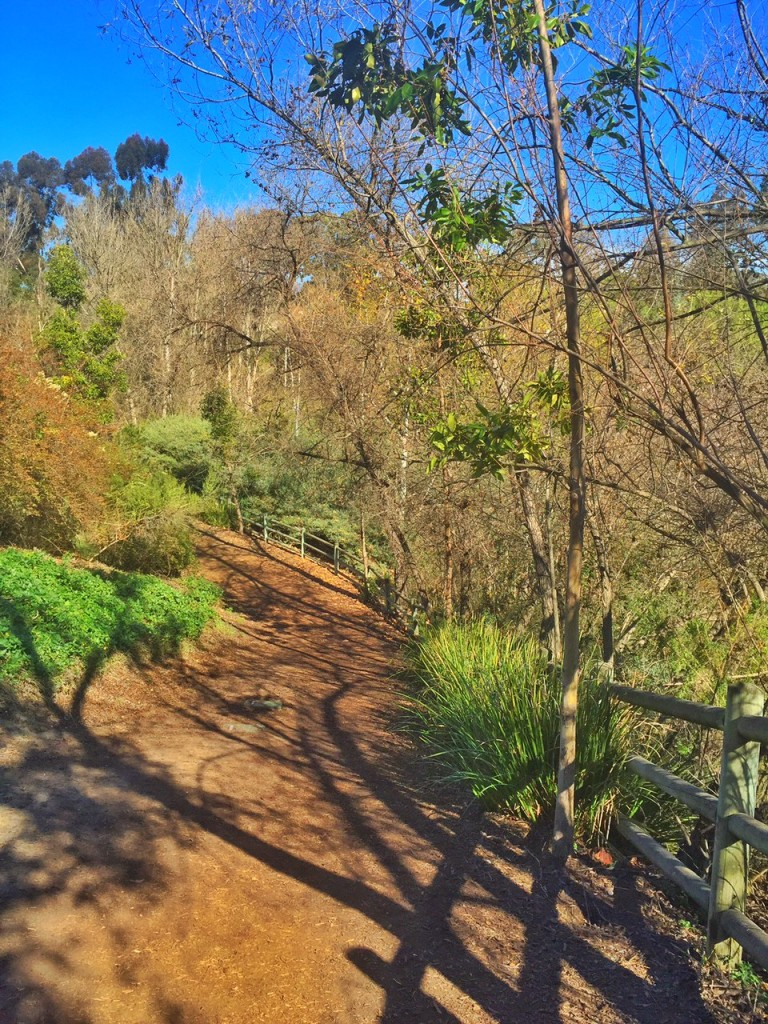 Best Hiking Trails in Orange County