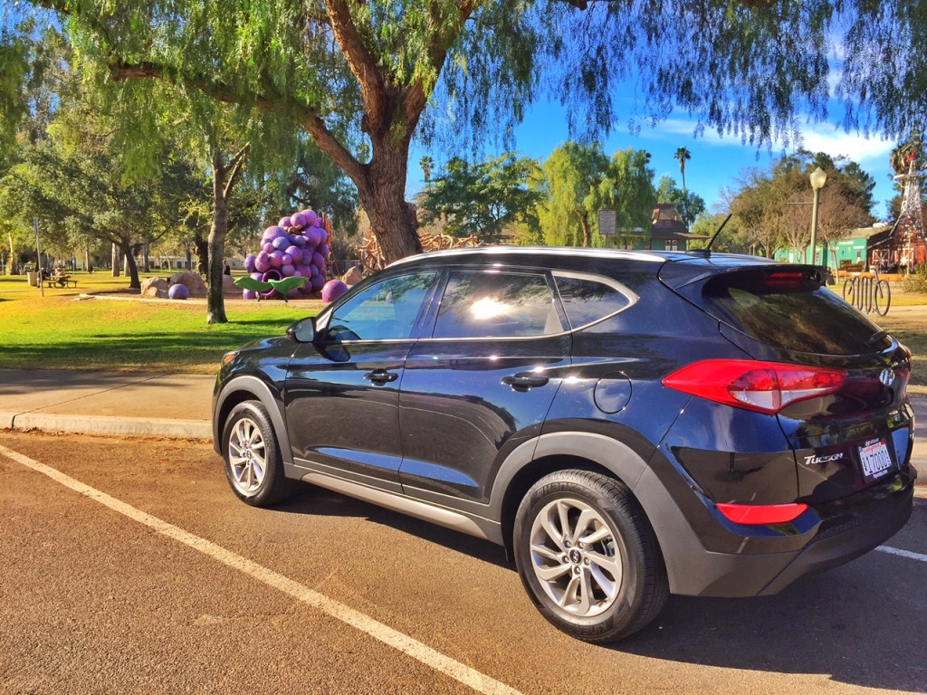 Hyundai Tucson at a park