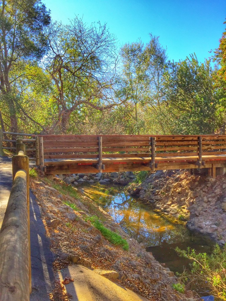 Best Family Hiking Trails in orange county