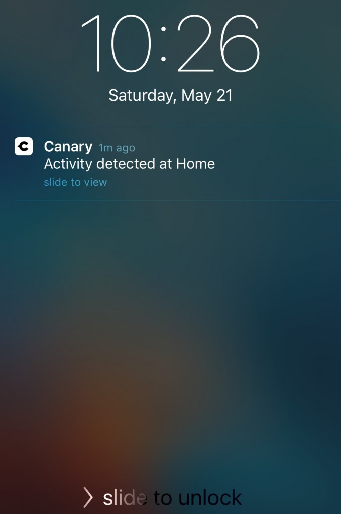 Canary Home Security activity notification