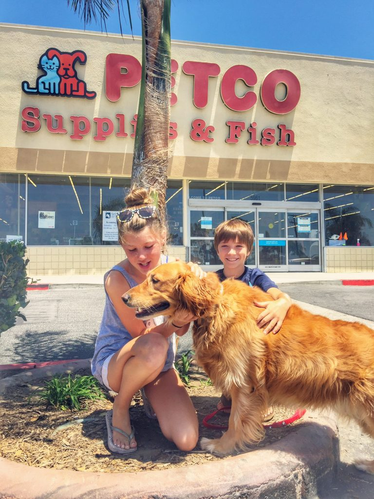 Daisy and the kids at Petco