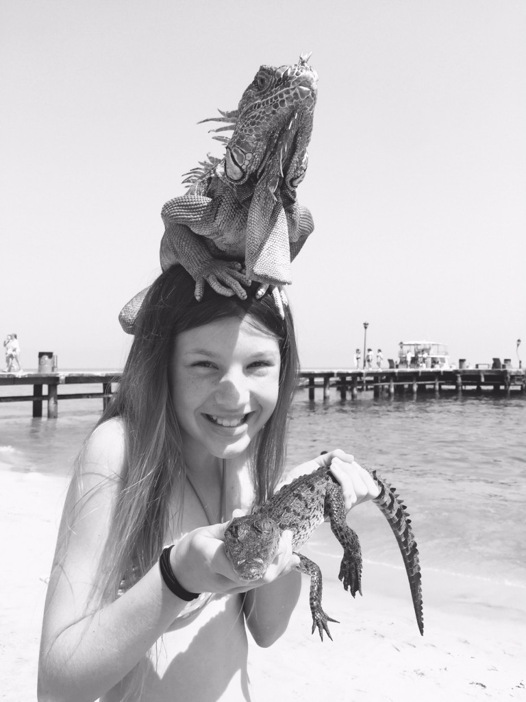 Iguana and alligators at Las Animas Beach
