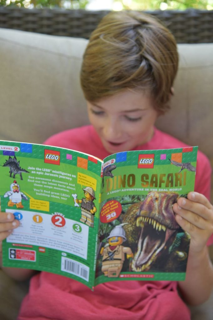 LEGO nonfiction books