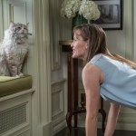 Ultimate Cat Lover Movie: Nine Lives