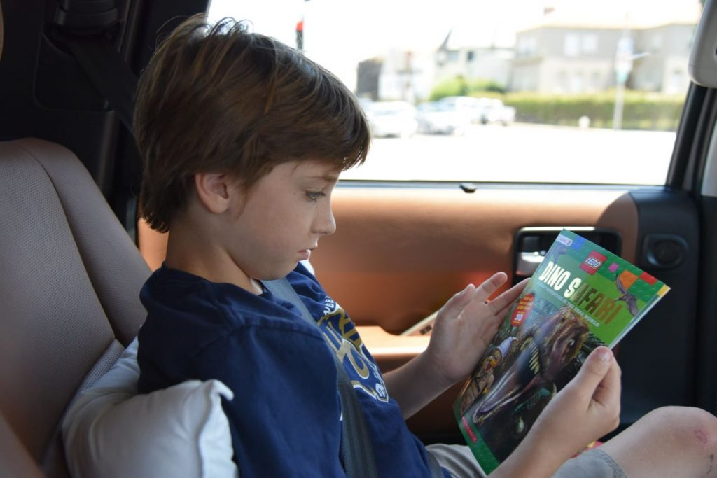 Reading LEGO books in the car