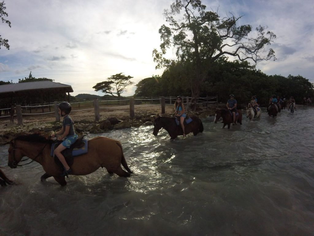 Creating Memories Riding Horses in Jamaica
