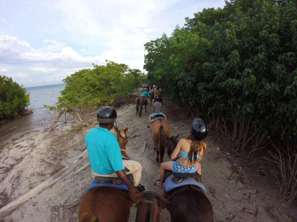 Jamaica horseback riding adventure