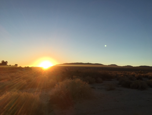 Sunrise at 29 Palms Inn in Joshua Tree