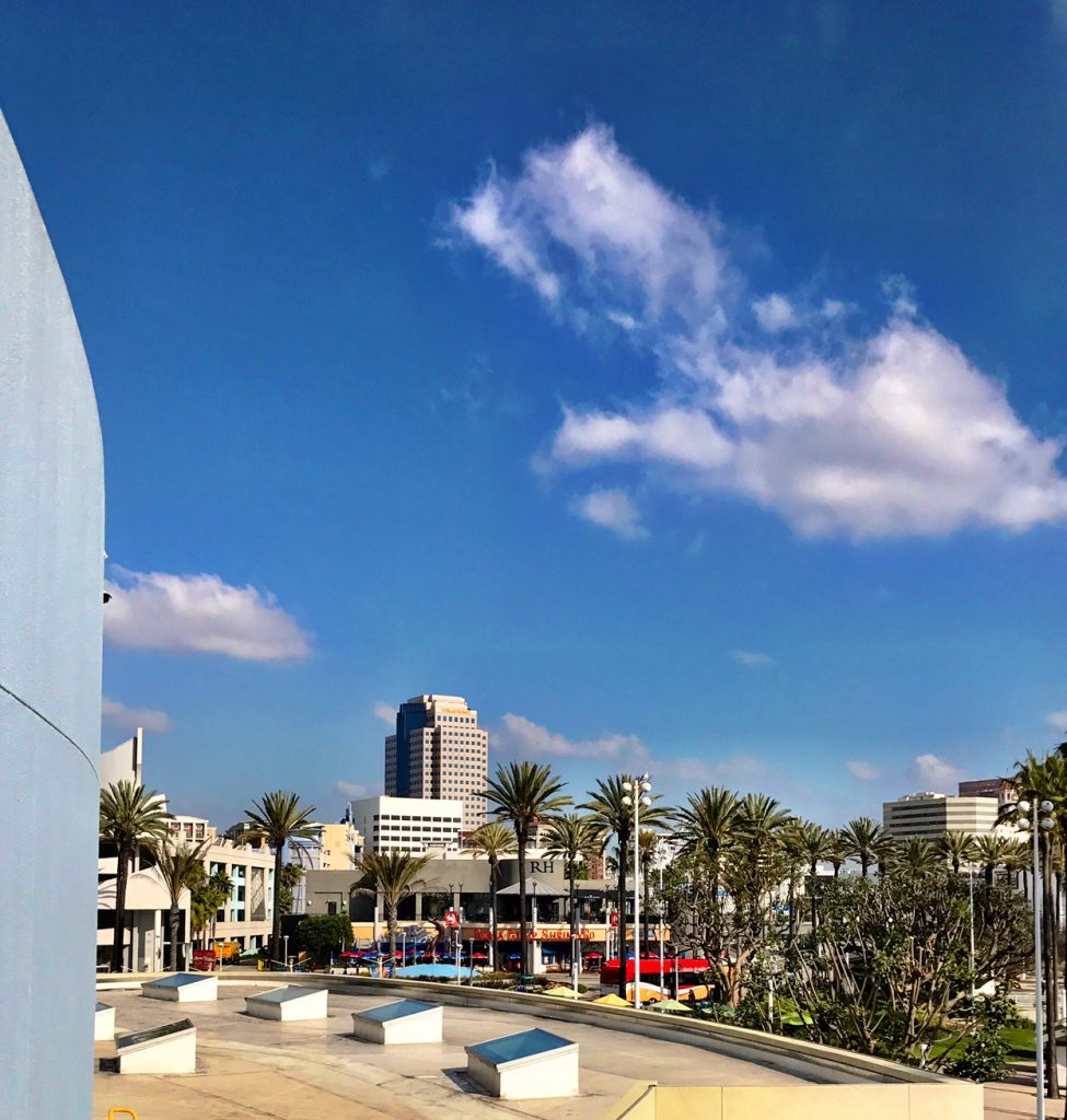 View of Long Beach from the Aquarium of the Pacific
