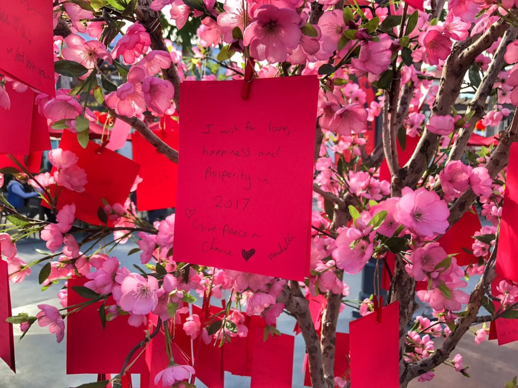 A wish on the wishing tree at Universal Studios Hollywood Lunar New Year