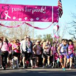 Paws Fur Pink: Dog-Friendly Run/Walk