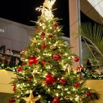 Join Frosty, Rudolph and Santa at the Kaleidoscope Tree Lighting