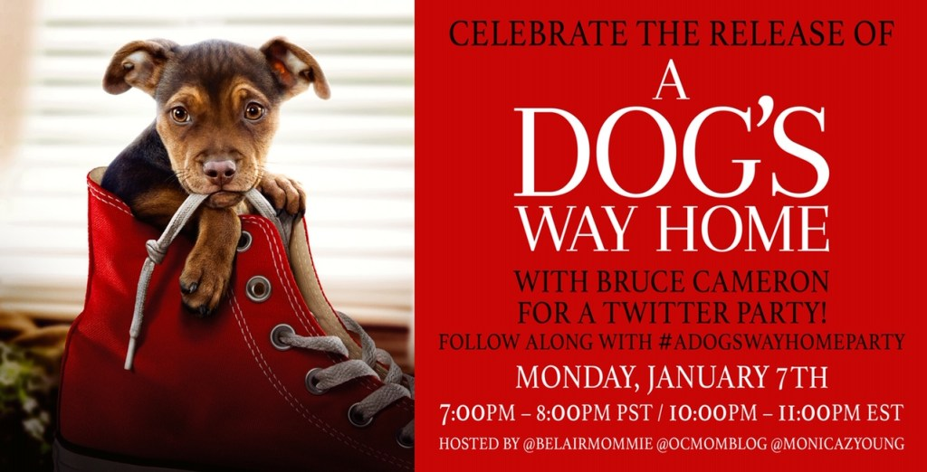 A Dog's Way Home Twitter Party Invitation