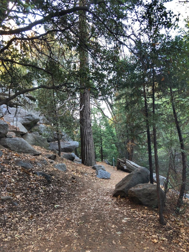 Path that leads to the heart rock waterfall in Crestline