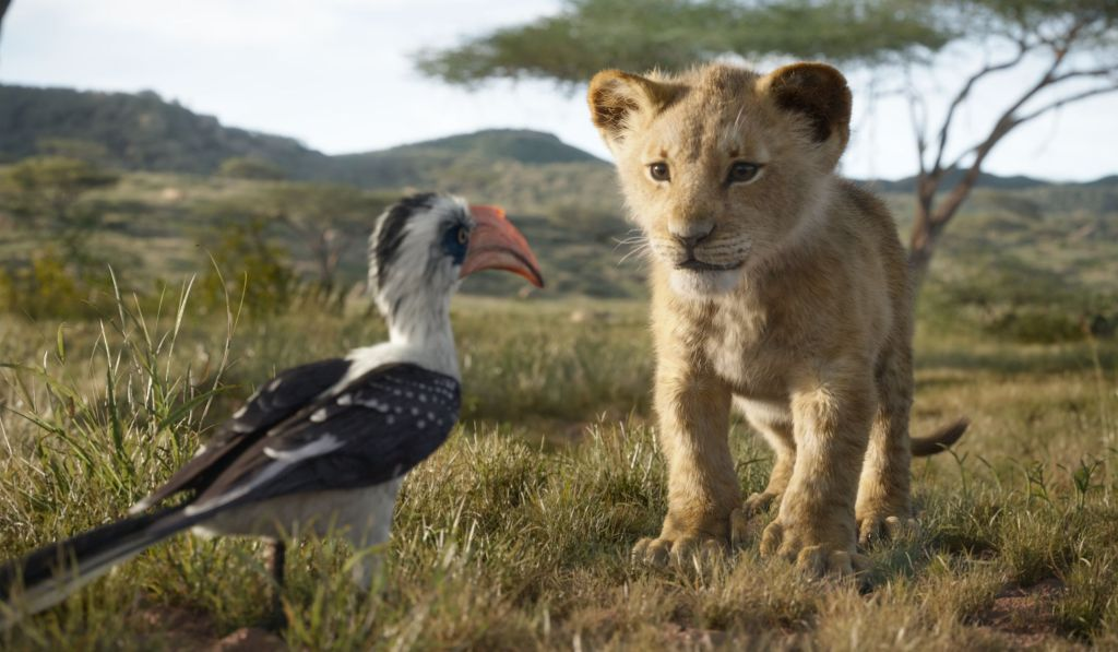 Baby Simba in The Lion King