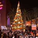 You're Invited: Duck the Halls Tree Lighting 2019