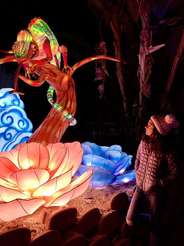 The magic of the Chinese Lantern Festival