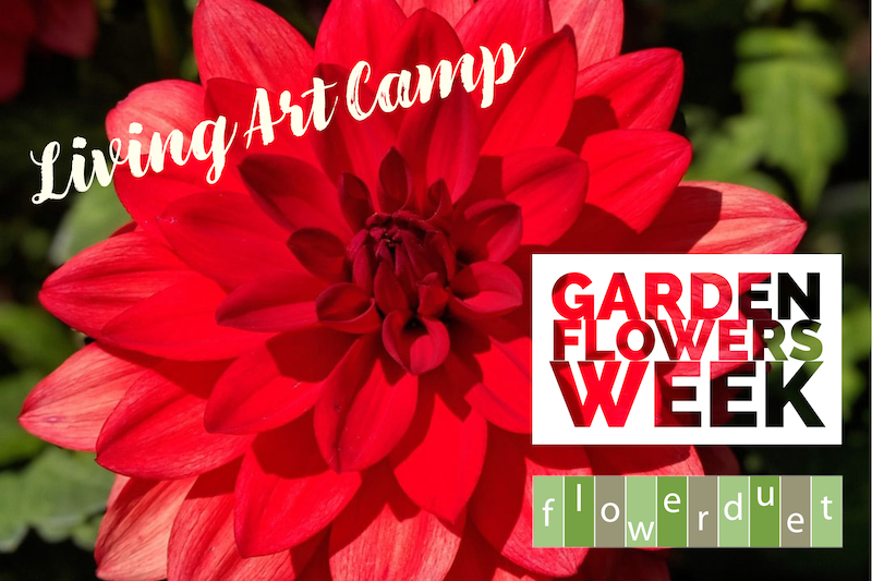 Garden Flowers Week During Living Art Camp