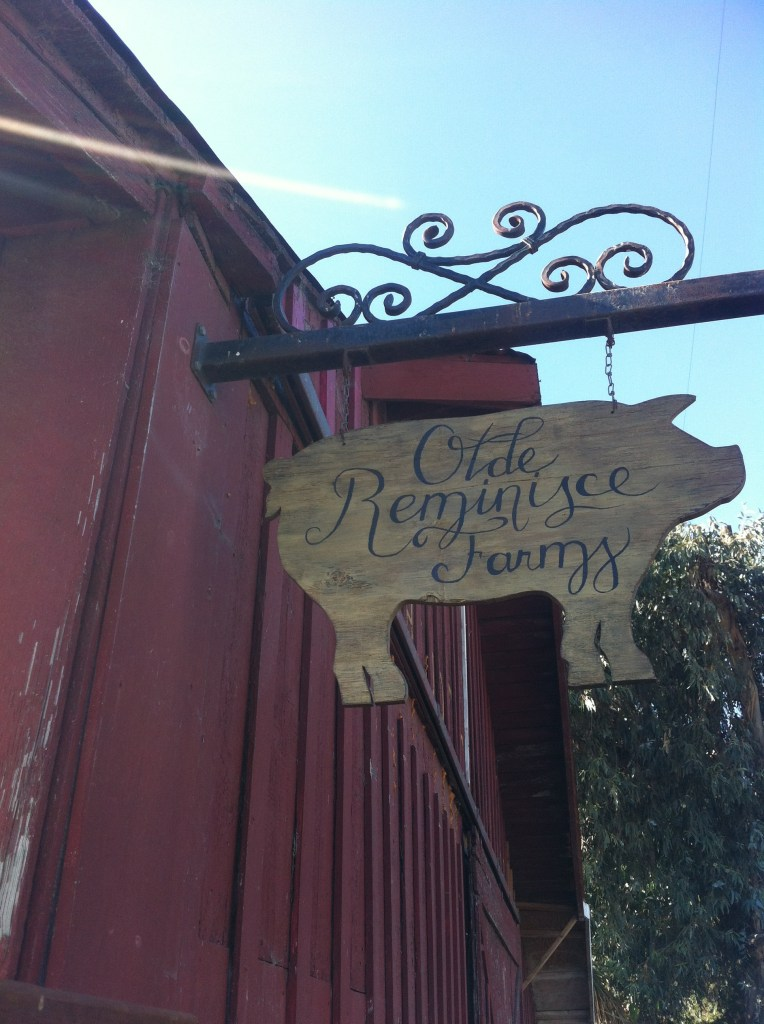 Old Reminisce Farms