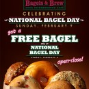 Free Bagels at Bagels & Brew for National Bagel Day