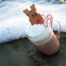 Enjoy Cider and Cookies at The Crystal Cove Tree Lighting