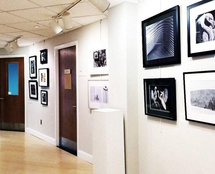 OCAC photography show (courtesy of Ocean City Arts Center)