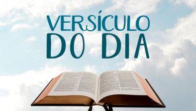 Aplicativo de versículo diário da bíblia