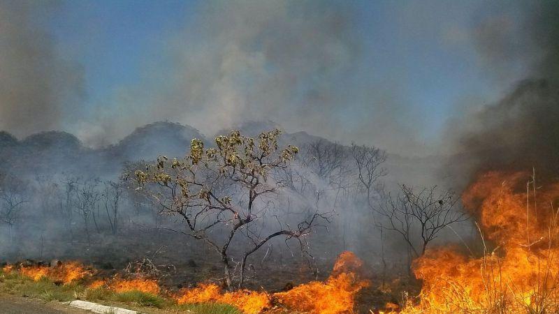 Focos de calor no Tocantins seguem padrão do clima, diz Defesa Civil