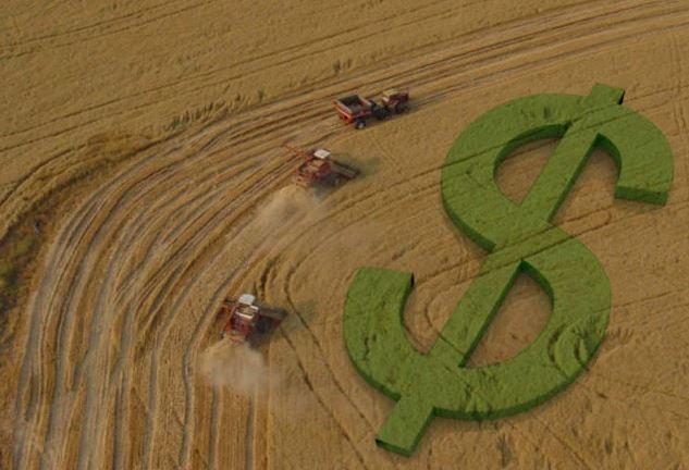 Banco do Brasil abre portas para o agro e fecha para população geral