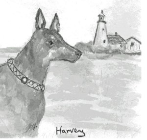 Tales and Paws illustration2