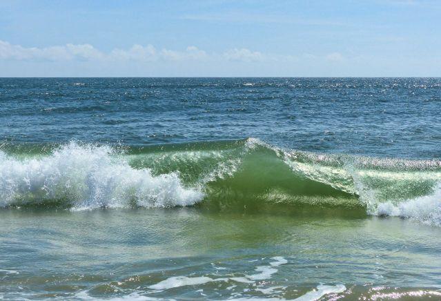 wave sam photo 3