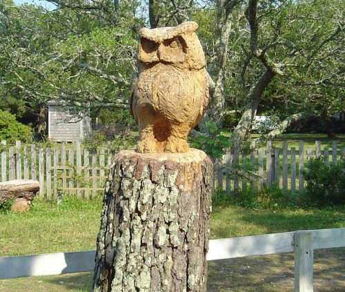 The chainsaw-carved owl by Len Skinner at the trailhead to Springer's Point on Loop Road succumbed last fall to the ravages of nature. Photo: P. Vankevich