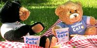 Image: Teddy bears picnic 2019
