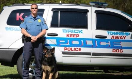 Brick: June Overdoses Report