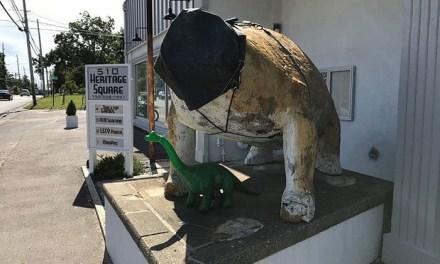 Bayville Dinosaur Update!