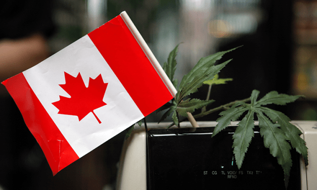 Canada Has Just Legalized Marijuana for Adults Nationwide!