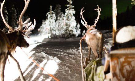 OCEAN COUNTY: Santa Report – Santa Sighted!