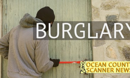 BRICK: Serial Burglar Caught