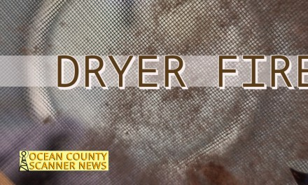BRICK: Possible Structure/Dryer Fire
