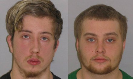 LAKEHURST: Police Arrest Side Mirror Smashers