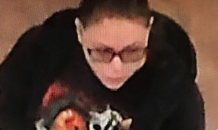 Police Seek Stafford Shoplifter