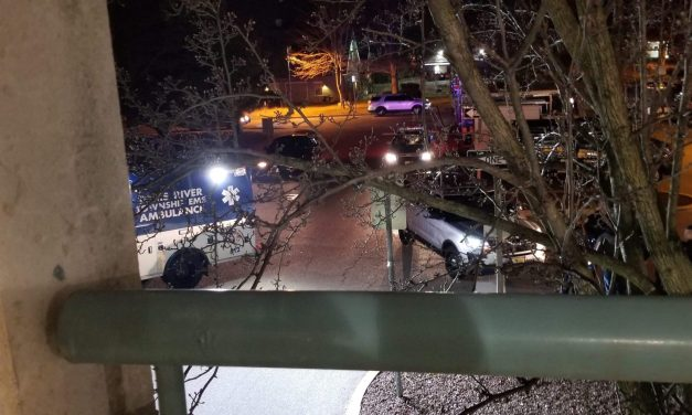 TOMS RIVER: Man Leapt To His Death