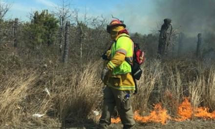 BERKELEY: Suspicious Brush Fire