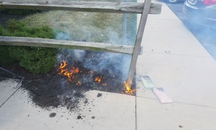 TR: Mulch Fire
